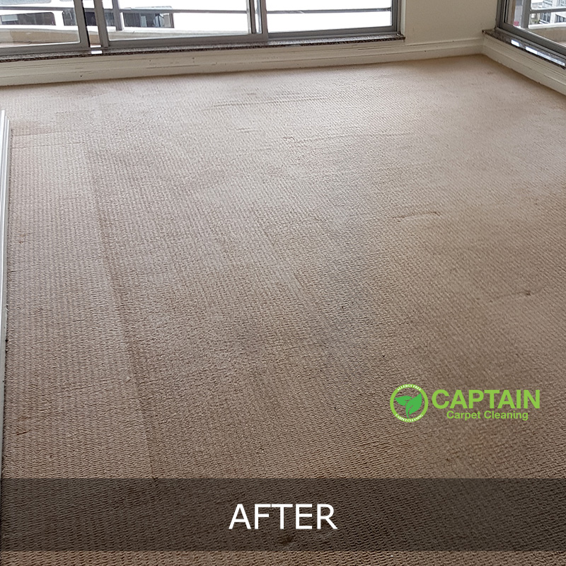 Captain Carpet Cleaning Our Services