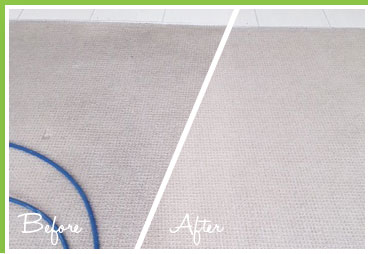 Carpet cleaning example 5